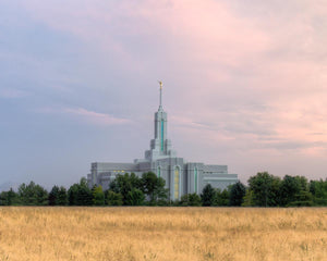 Mt. Timpanogos Utah Temple House of Worship