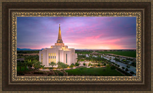 Gilbert Pink Sunrise