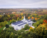 Palmyra and Sacred Grove Aerial
