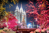 Salt Lake City Christmas Lights