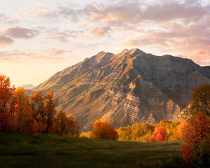 Timpanogos Autumn