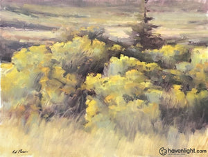 Rabbit Brush 16 X 20 Original Painting