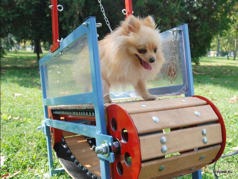 Fitness First Mini Dog Treadmill