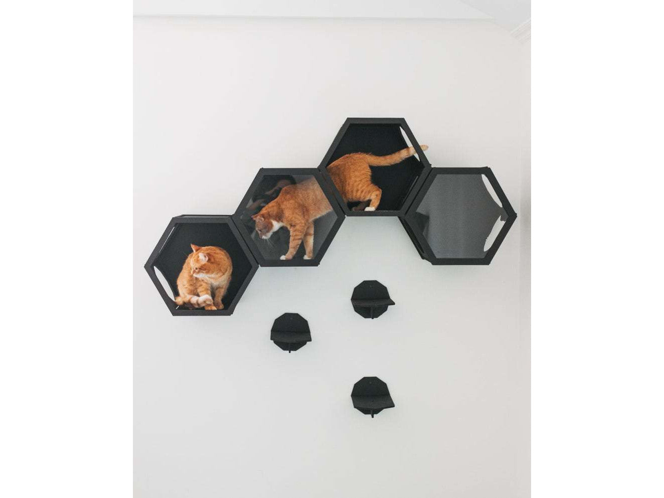 Hexagon Cat Shelves