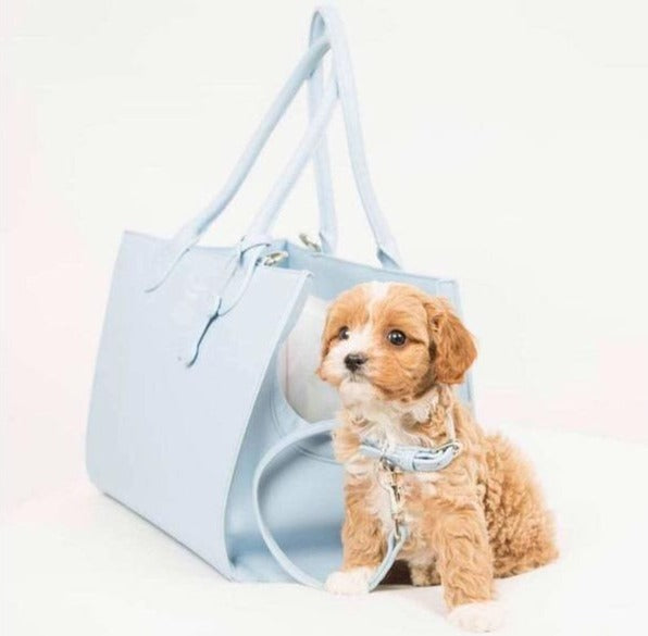 Rodeo Drive Dog Carrier