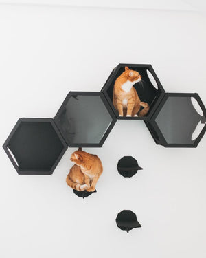 Wall Cat Shelf