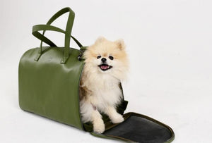 Grace Modern Dog Carrier