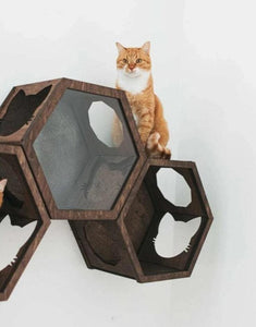 Contemporary Hexagon Shelf Cat Shelves