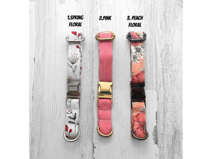 Personalized Designer Dog Collar