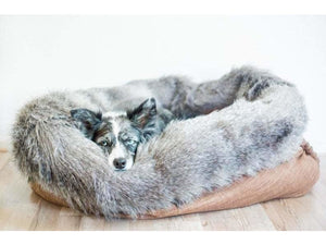 Furry Favorite Snuggle Bed