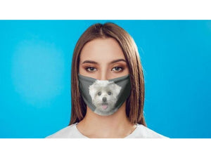 7 Layer Carbon Filter Face Mask