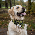 Load image into Gallery viewer, Camouflage Dog Bandana Golden Retriever