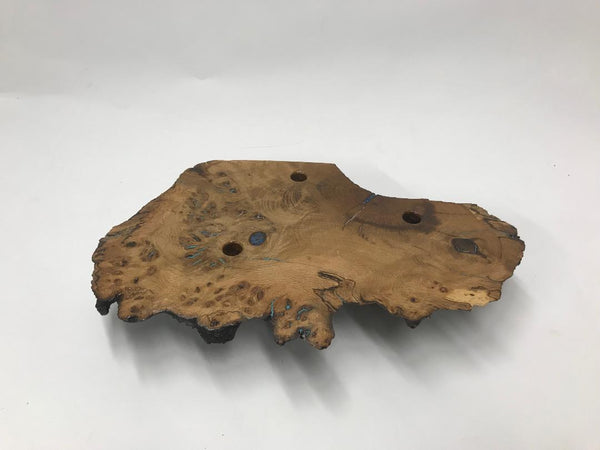 This one of a kind Oak burl fly display 01 has some of the cracks filled with copper and some others with turquoise and blue stone making it really interesting and beautiful.