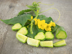 Boston Pickling Cucumber (25-35 seeds)