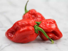 Caribbean Red Habanero Pepper (25 seeds)
