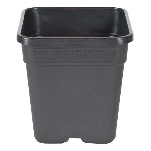 Square Pot Black, 8""