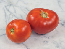 Load image into Gallery viewer, Betalux Tomato (25 seeds)