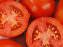 Load image into Gallery viewer, Martino's Roma Tomato
