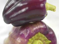 Lilac Bell Pepper (25 seeds)