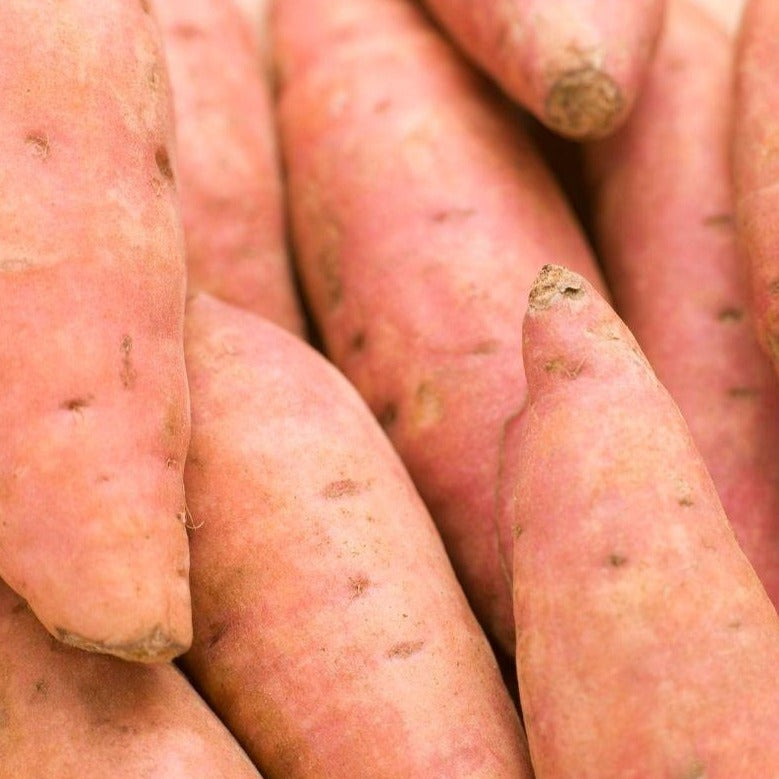Sweet potato gold