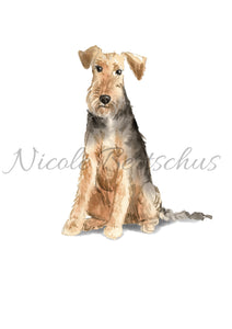 "Personalisiertes Poster ""AIREDALE TERRIER"", DIN A4, DIN A3"