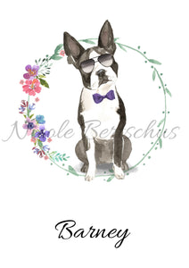 """BOSTON TERRIER"", DIN A4, DIN A3"