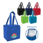 Compact Snack Pack Cooler (CT20007) - Bags for less us