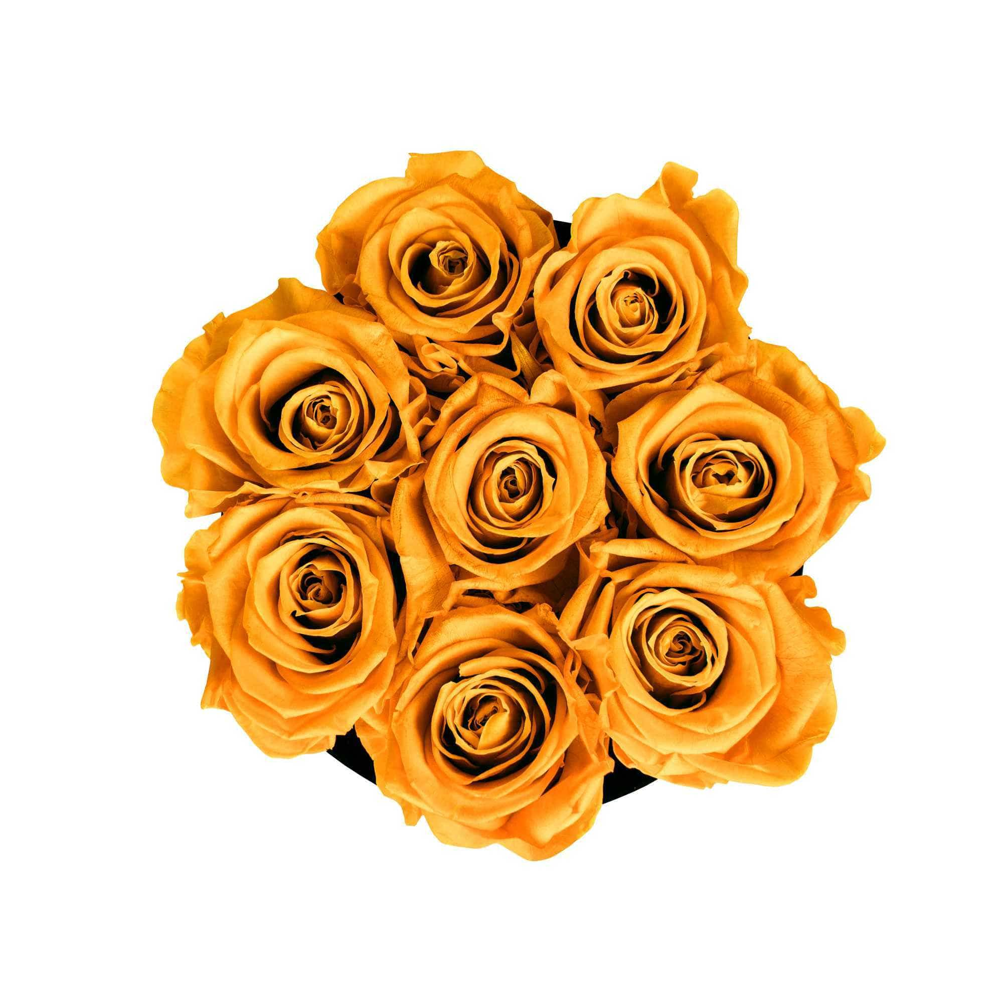 Klassische Medium [product_type] Goldblume  goldblume1.myshopify.com [variant_title] [option1] [option2] [option3]