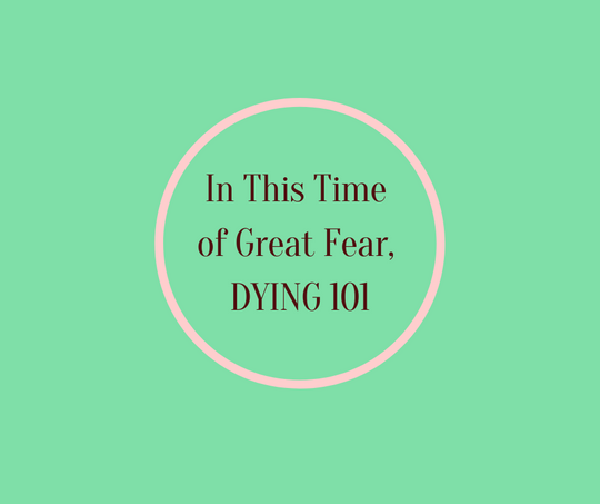 In This Time of Fear, Dying 101 by Barbara Karnes, RN