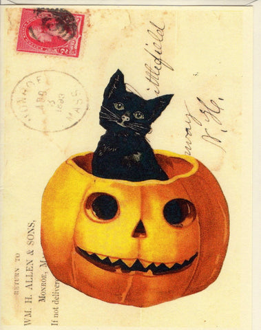 Black Cat in Pumpkin Note Card