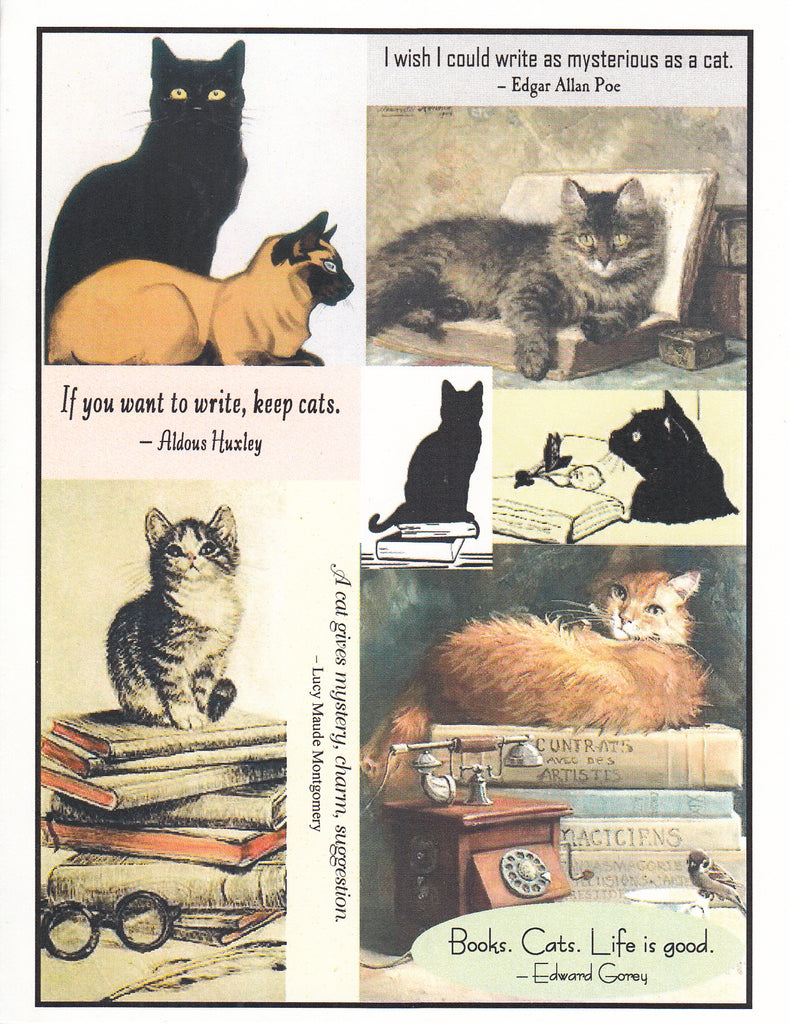 Books. Cats. Collage Note Card