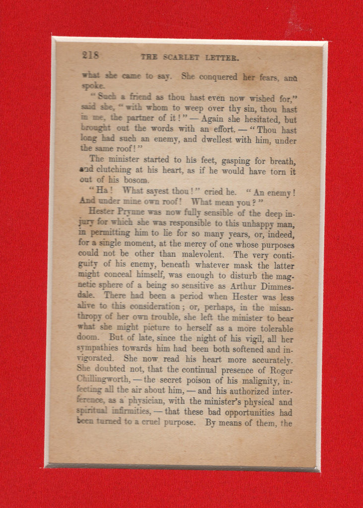 The Scarlet Letter ~ Page from 1890s Printing