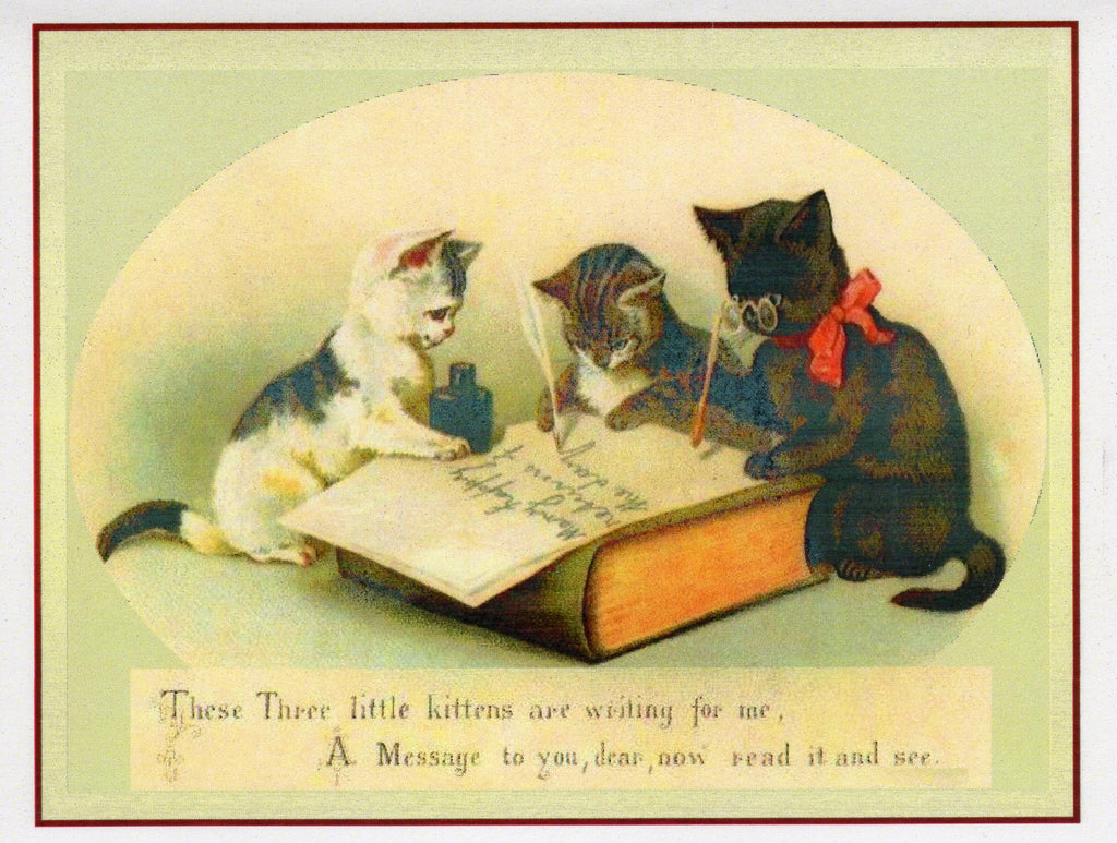 Three Kittens Writing Note Card