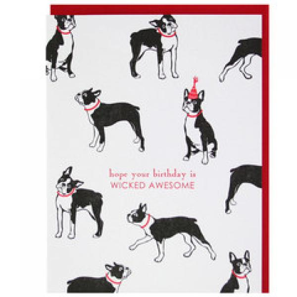 Boston Terrier Wicked Birthday