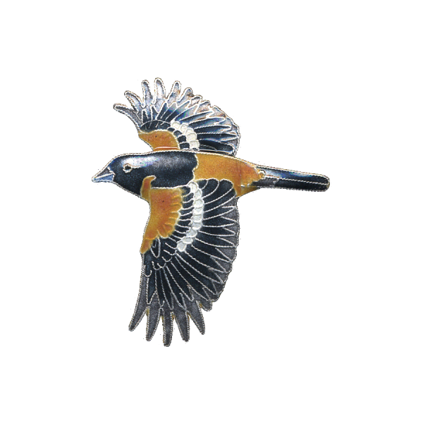 Baltimore Oriole Cloisonne Pin