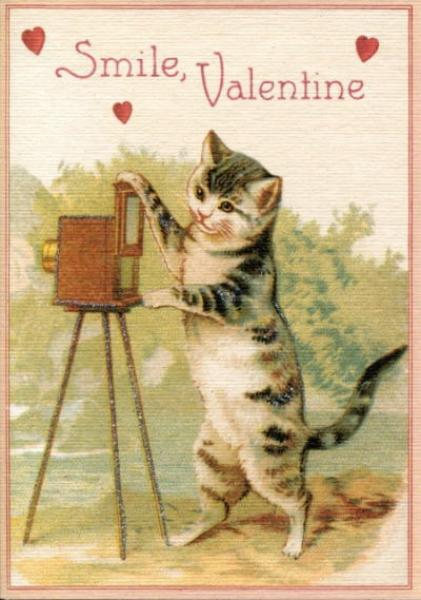 Valentine Cat with Camera