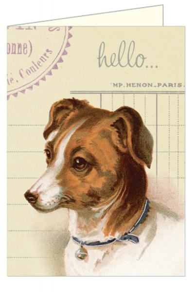 Dog Notecards in Tin