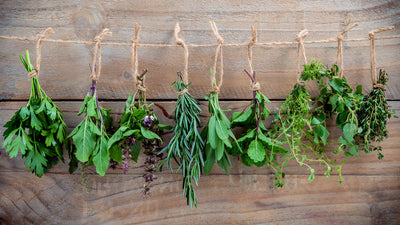 An Overview of Herbal Treatment Philosophies