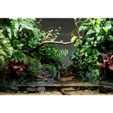 NEW 1pc Aquarium Tree Trunk Driftwood Fish Tank Reptile Plant Wood Decoration Ornament