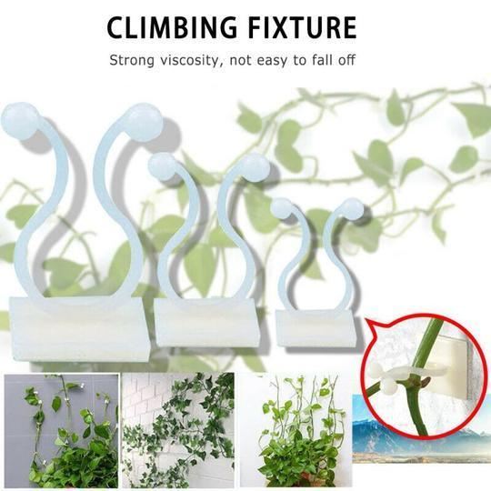 Plant Climbing Wall Clip ( Free Shipping + 50% OFF )