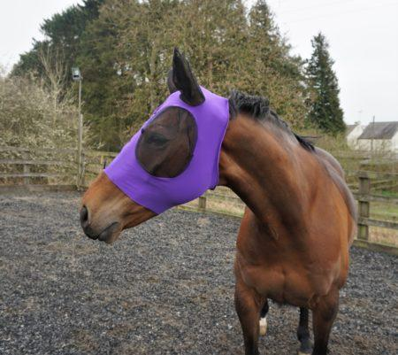 Anti-Fly Mesh Equine Mask ( 50% Off + free shipping)
