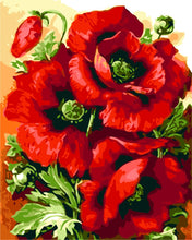 Plant Paint By Numbers Kits Red Flower Paint By Numbers Kits