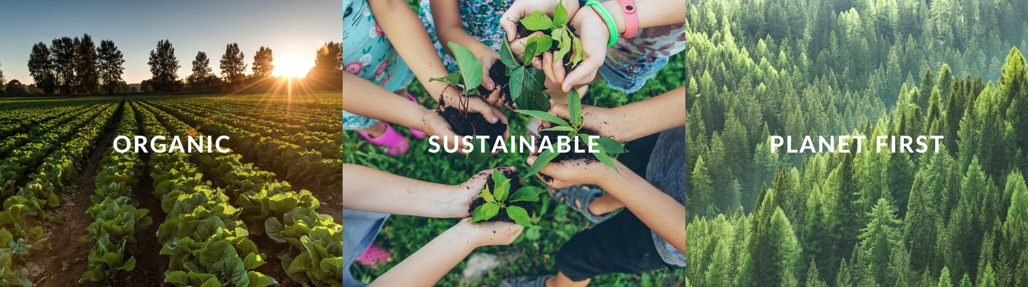 Organic, sustainable and planet first values