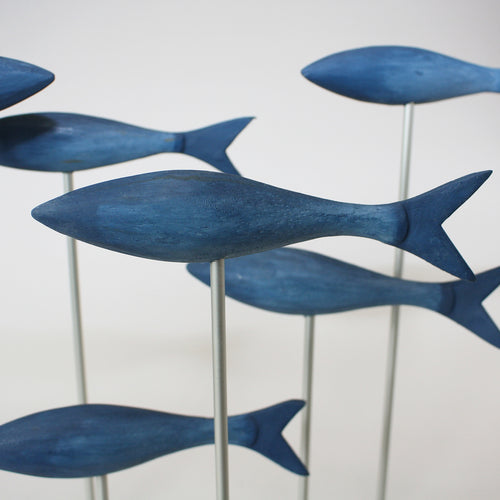 Small Blue Fish Shoal