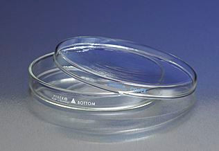 PYREX 100x20mm Petri Dish Cover Only