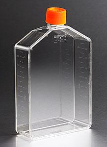 431081 225cm Angled Neck Cell Culture Flask with Plug Sea