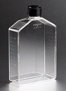 431085 175cm Rectangular Angled Neck Cell Culture Flask w
