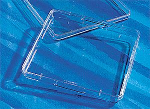 431110 500cm  Square Dish, Tissue Culture-Treated , Steri