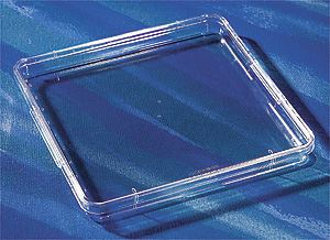 431272 245mm Square BioAssay Dish with Handles, Not Tissu