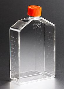431466 175cm Angled Neck Not Treated Cell Culture Flask w